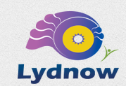 Lydnow Training and Innovations LLP