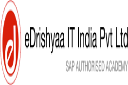 eDrishyaa IT India Private Limited.