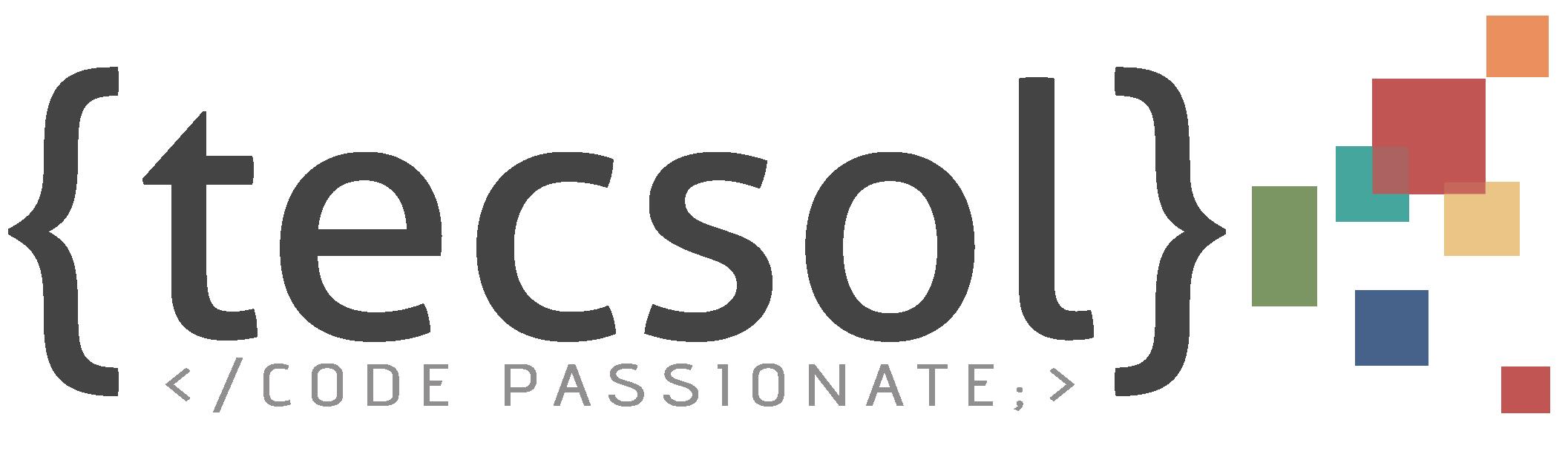 TECSOL Software Pvt Limited