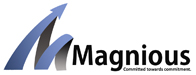 Magnious Solution Pvt Ltd
