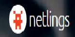 Netlings Webworks Pvt Ltd