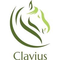 Clavius solutions
